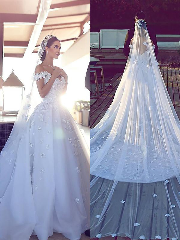Comfortably Chic Ball Gown Tulle V-neck Chapel Train Wedding Dresses