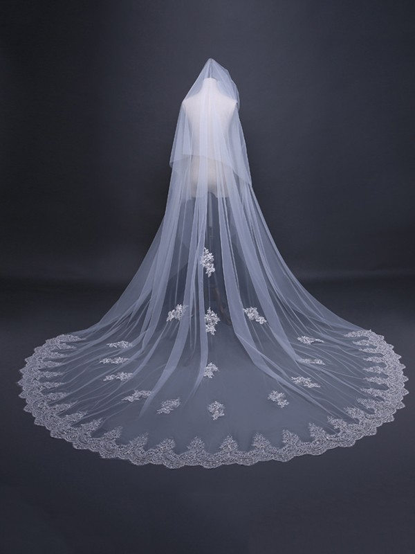 Charming Tulle With Lace Long Wedding Veils