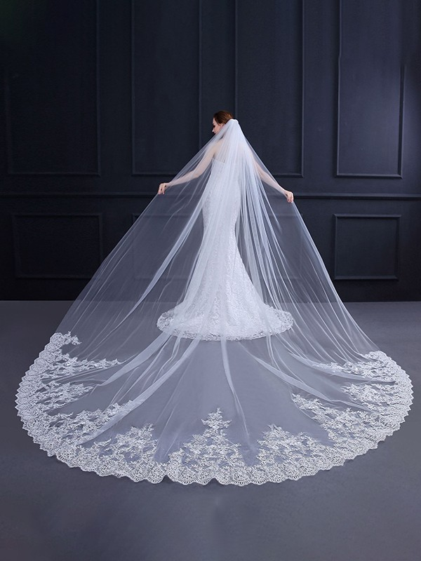 Luxurious Tulle With Lace Wedding Veils