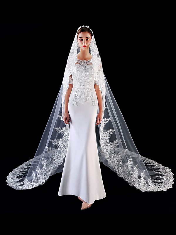 Unique Tulle With Applique Long Wedding Veils